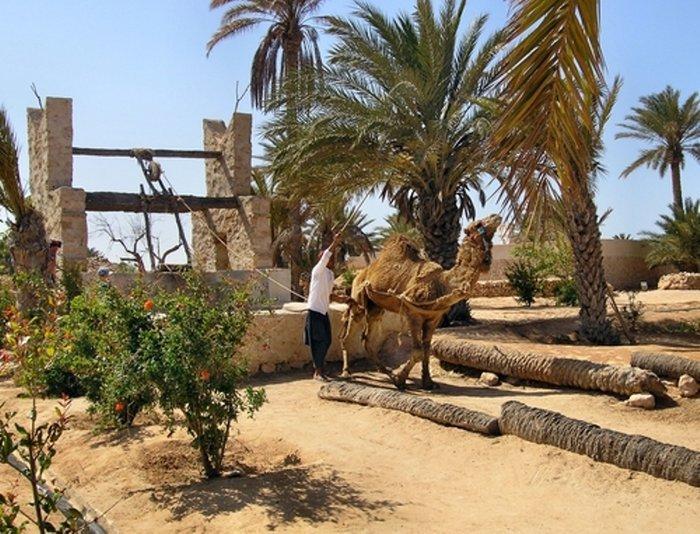 Djerba Explore - Деревня «Наследие»