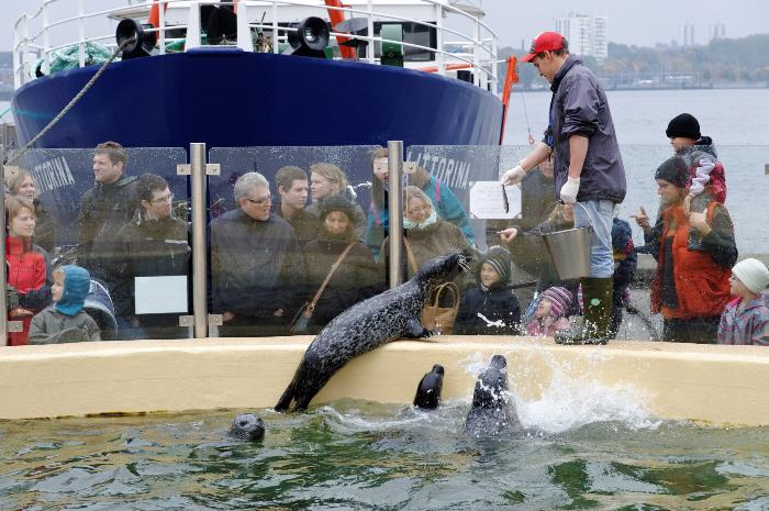 Aquarium Kiel