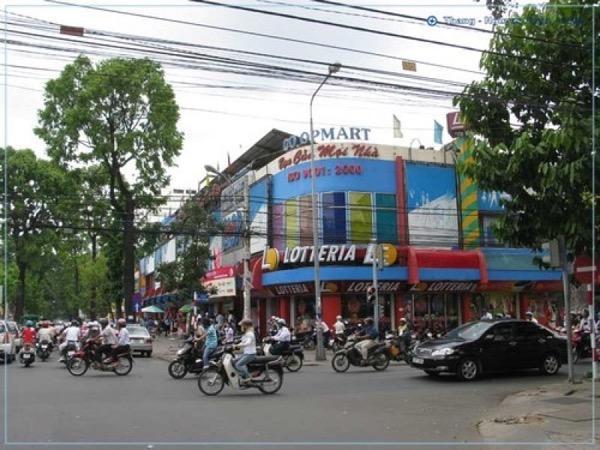 Nguyen Dinh Chieu