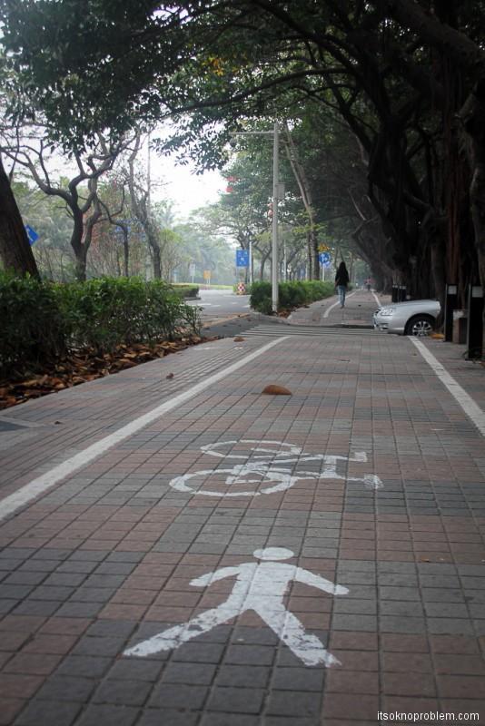Жизнь велосипедистов в Шэньчжэне