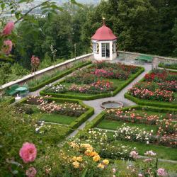 Сад роз Rosengarten