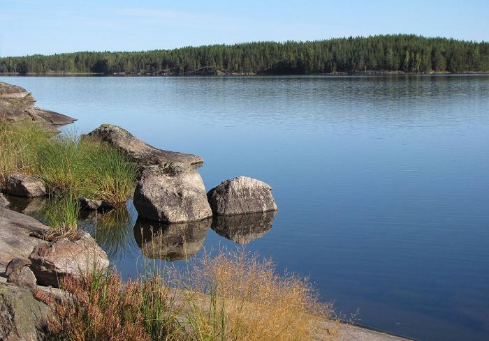Характерный скалистый берег озера Сайма.jpg