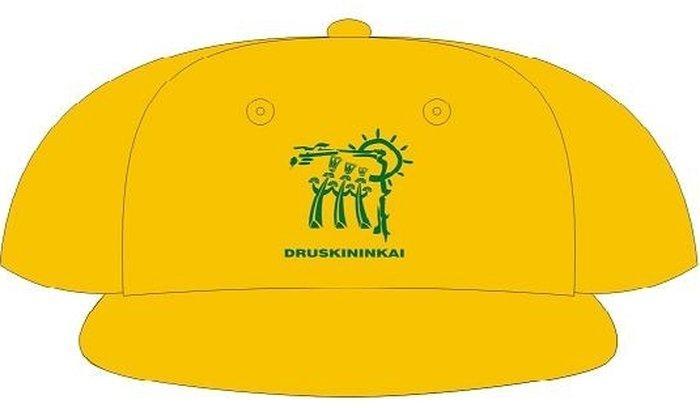 Сувениры Друскининкая