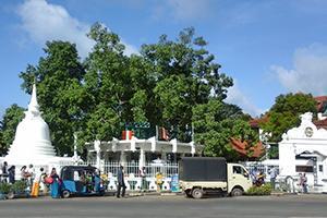 Храм Матара Бодхийя, Матара, Шри Ланка