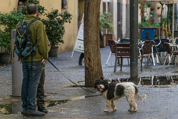 На прогулке по городу пригодится зонт и удобная обувь.