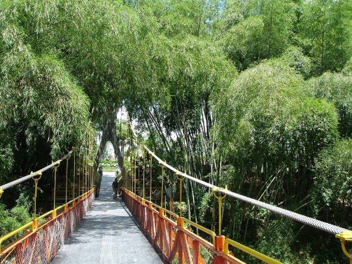 Городской парк с ботаническим садом