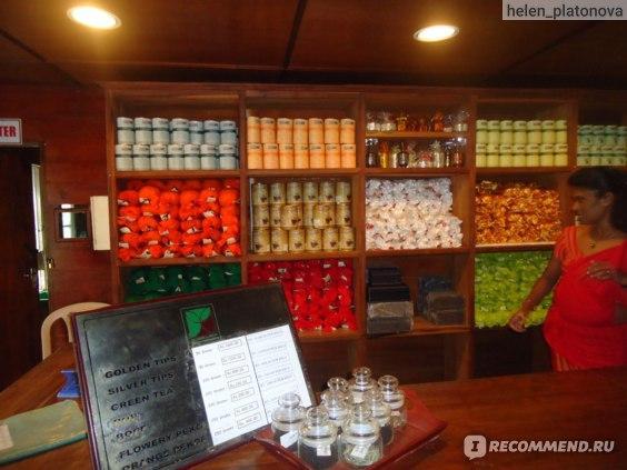 магазин на чайной фабрике