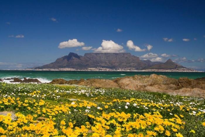 Столовая гора в Кейптауне.jpg