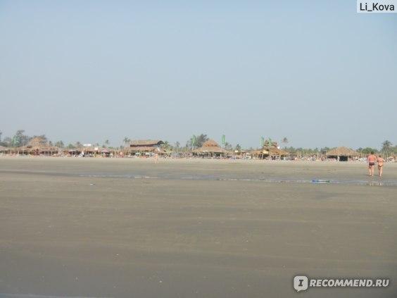 Шеки на пляже Морджим