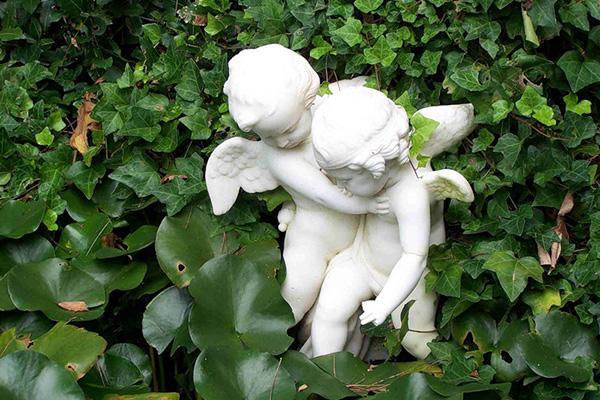 Ангелы в саду.