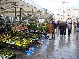 Большой цветочный рынок на Kouter