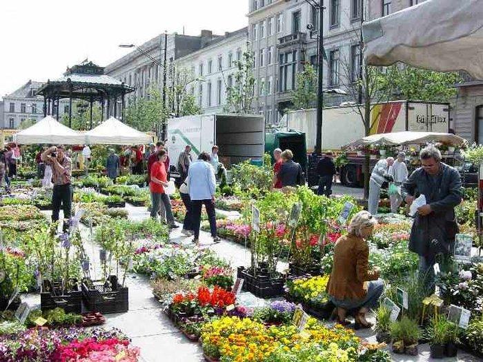 Цветочный рынок Kouter