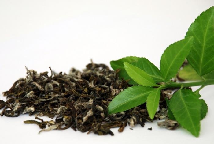 Чай Китай.jpg
