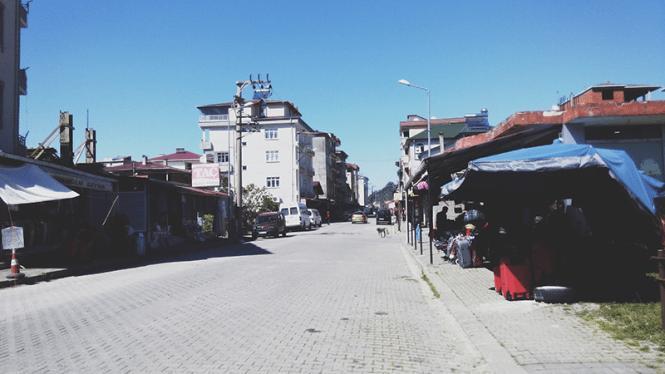 iz batumi v turciyu sarpi kemalpasaistanbul bazaar 15