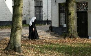 Монастырь De Wijngaard