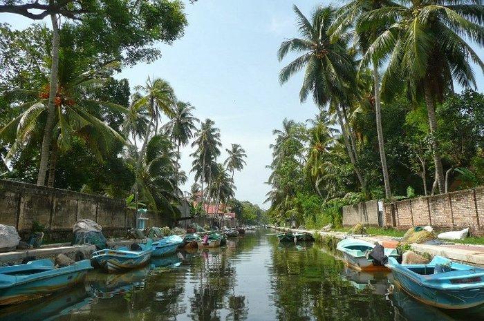 Каналы Негомбо (Negombo Canals)