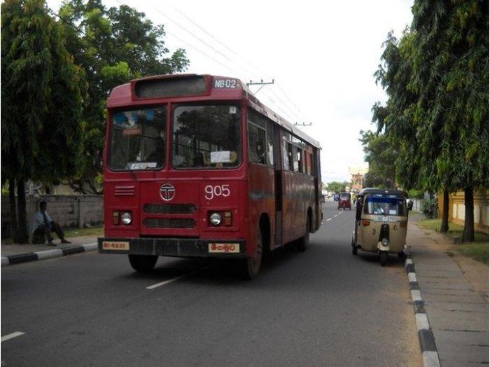 Из Коломбо можно доехать на автобусе