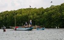 Заповедник Мутураджавела (Muthurajawela Marsh)