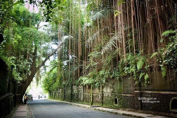 Улицы Убуда