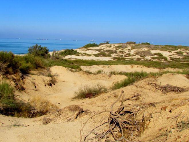 Парк Песчаных дюн