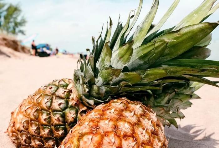 ананасы в доминикане